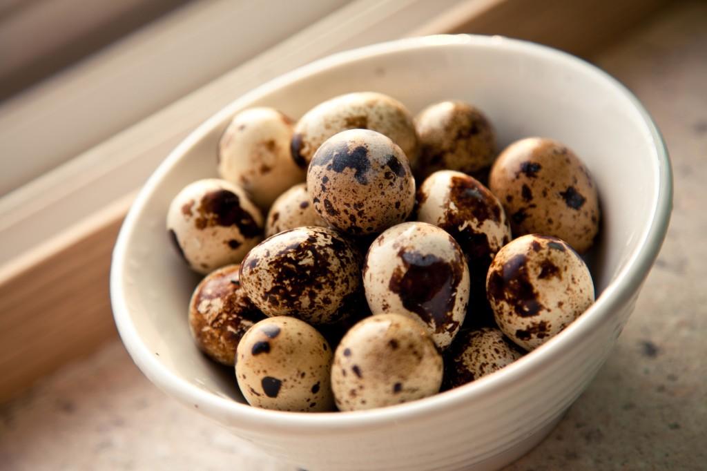 Сколько весит яйцо куриное, страусиное и перепелиное. Вес желтка и белка вареного яйца без скорлупы.