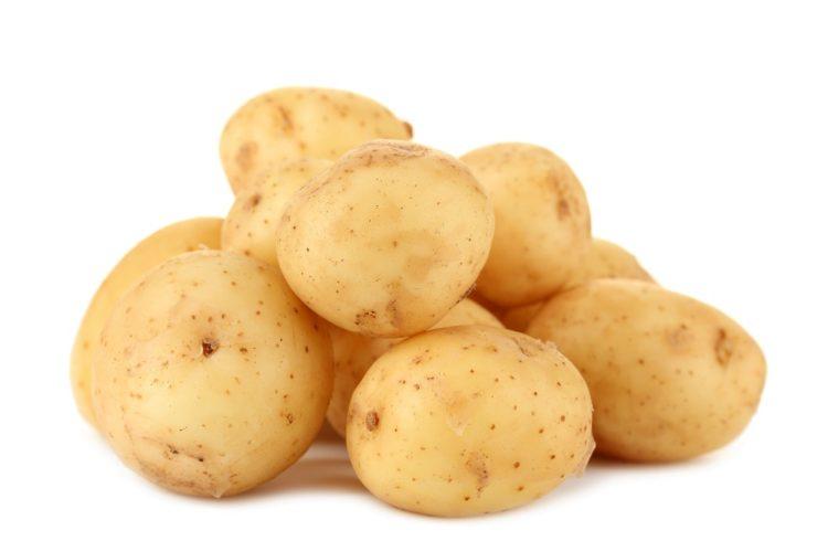 Можно ли кормить индюков картошкой?