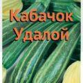 Кабачок Удалой